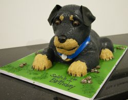 Rottweiler dog cake picture.PNG