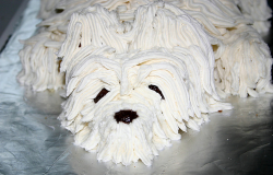 Pictures of birthday cakes for dogs.PNG