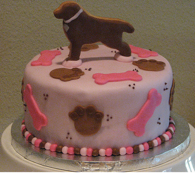 Cake Design With Dog : BIRTHDAY CAKES FOR DOGS - Fomanda Gasa