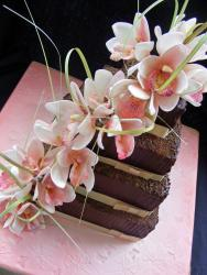 Orchids and Chocolat.jpg