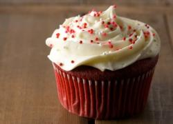 Red velvet cupcake with white cream on top.JPG