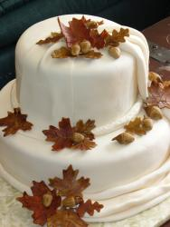 Fall Bridal shower cake pics.jpg