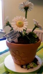 White daisy flower and pot birthday cake.jpg